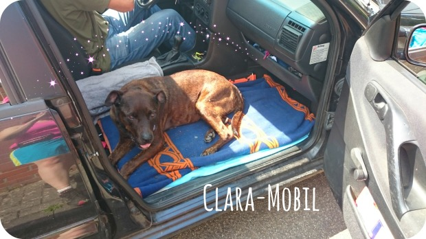 Clara mobil
