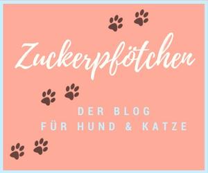 Zuckerpfötchen - Aus dem Leben mit Hund & Katz