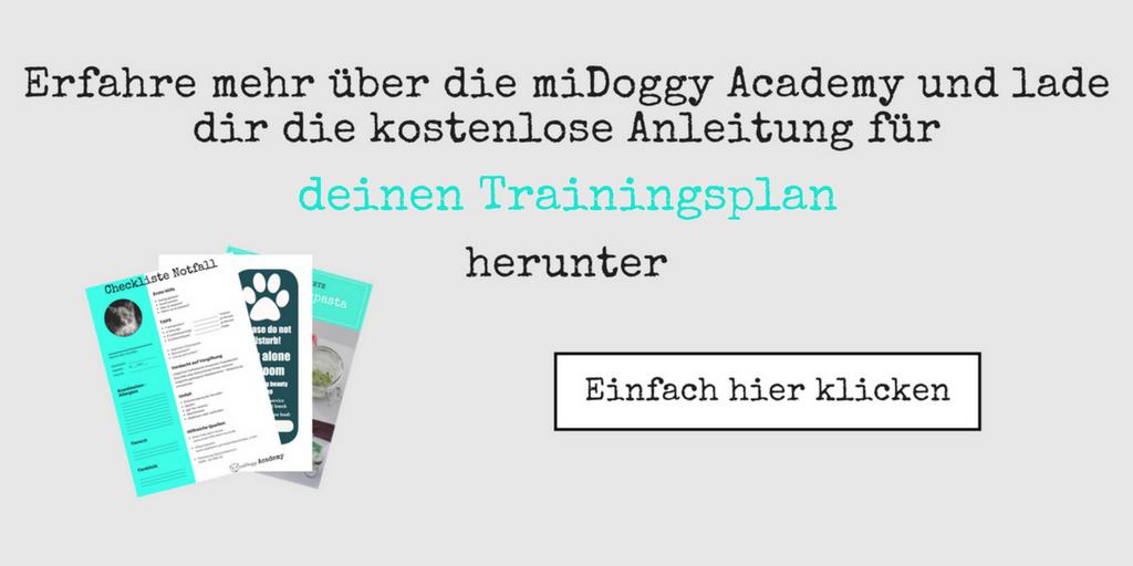Newsletter Klickbild